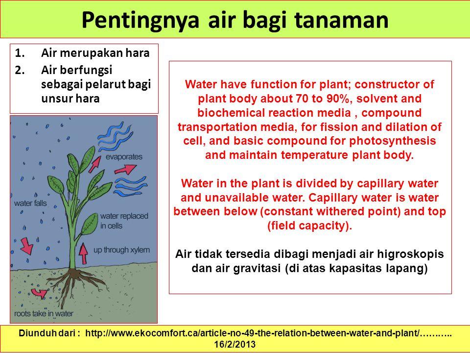 Pentingnya air bagi tanaman 1.Air merupakan hara 2.Air berfungsi sebagai pelarut bagi unsur hara Diunduh dari : http://www.ekocomfort.ca/article-no-49