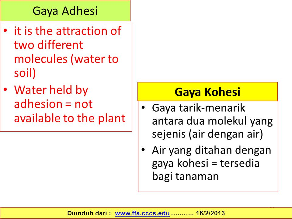 56 Gaya Adhesi it is the attraction of two different molecules (water to soil) Water held by adhesion = not available to the plant Diunduh dari : www.