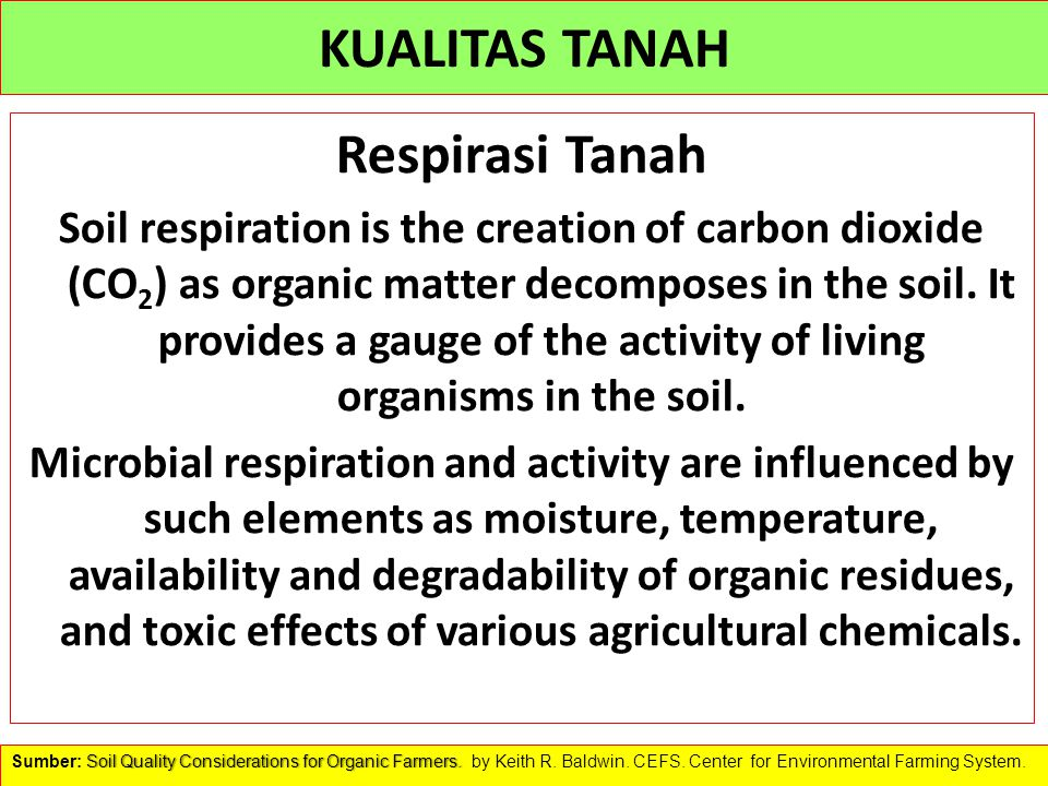 KUALITAS TANAH Respirasi Tanah Soil respiration is the creation of carbon dioxide (CO 2 ) as organic matter decomposes in the soil. It provides a gaug