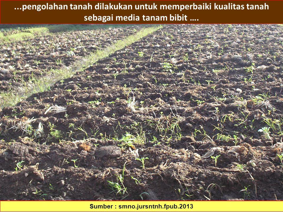 72...pengolahan tanah dilakukan untuk memperbaiki kualitas tanah sebagai media tanam bibit …. Sumber : smno.jursntnh.fpub.2013