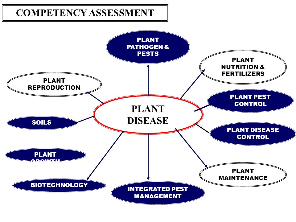 COMPETENCY ASSESSMENT LANDSCAPING Survey Land & Site Inventory Design Facilitating Practices Habitat Restoration Plant Soils ENVIRONMENT Issues & Agri