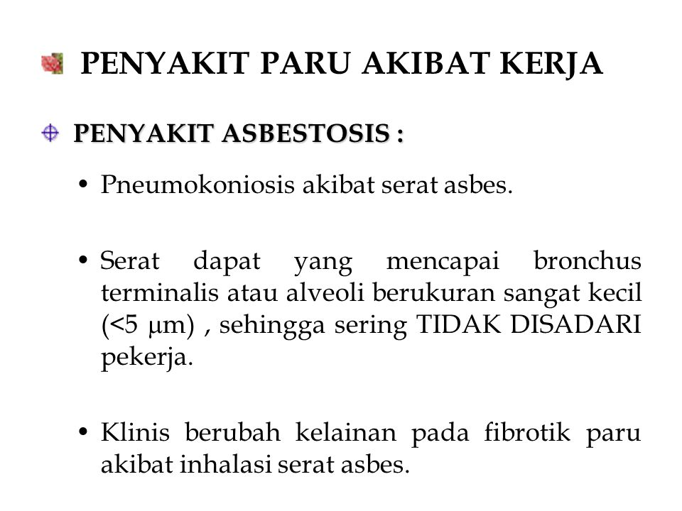 PENYAKIT PARU AKIBAT KERJA PENYAKIT ASBESTOSIS : PENYAKIT ASBESTOSIS : Pneumokoniosis akibat serat asbes. Serat dapat yang mencapai bronchus terminali