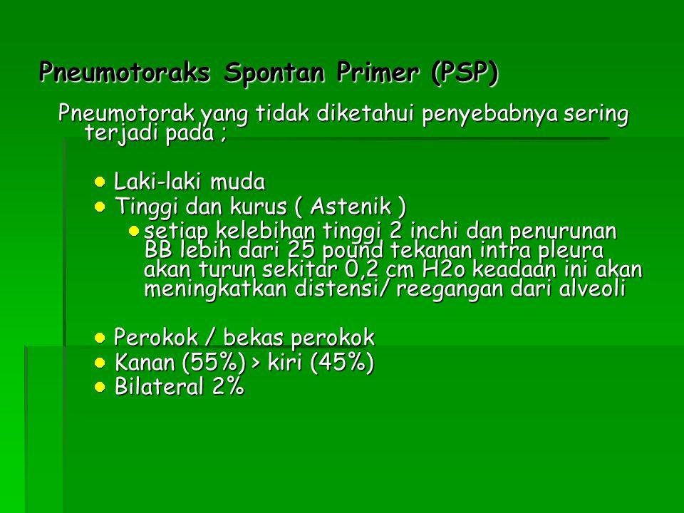 Pneumotoraks Spontan Primer (PSP) Pneumotorak yang tidak diketahui penyebabnya sering terjadi pada ; Laki-laki muda Laki-laki muda Tinggi dan kurus (