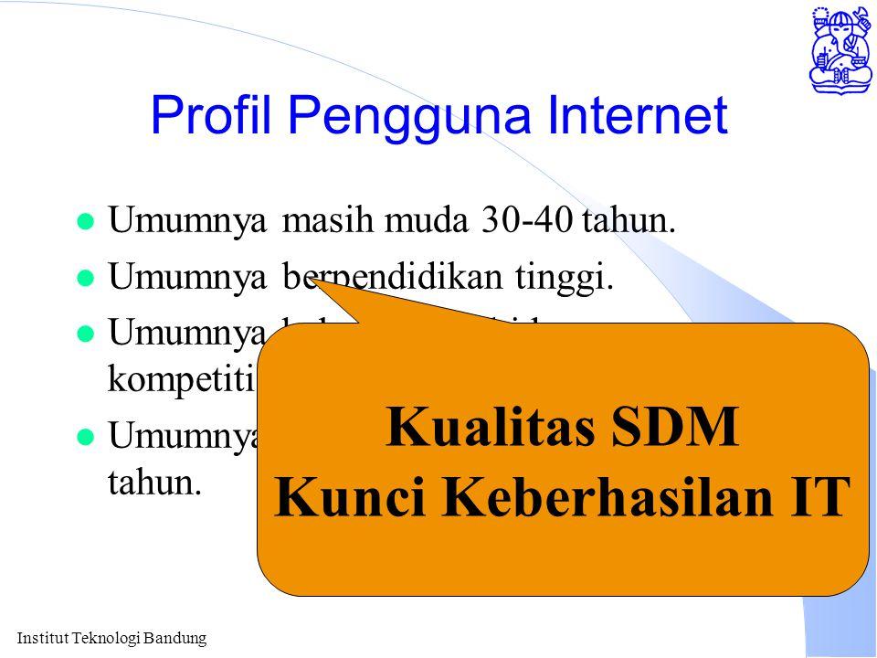 Institut Teknologi Bandung Profil Pengguna Internet l Umumnya masih muda 30-40 tahun.