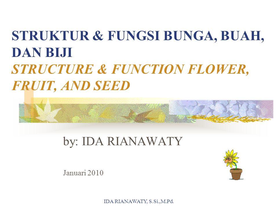 STRUKTUR & FUNGSI BUNGA, BUAH, DAN BIJI STRUCTURE & FUNCTION FLOWER, FRUIT, AND SEED by: IDA RIANAWATY Januari 2010 IDA RIANAWATY, S.Si.,M.Pd.