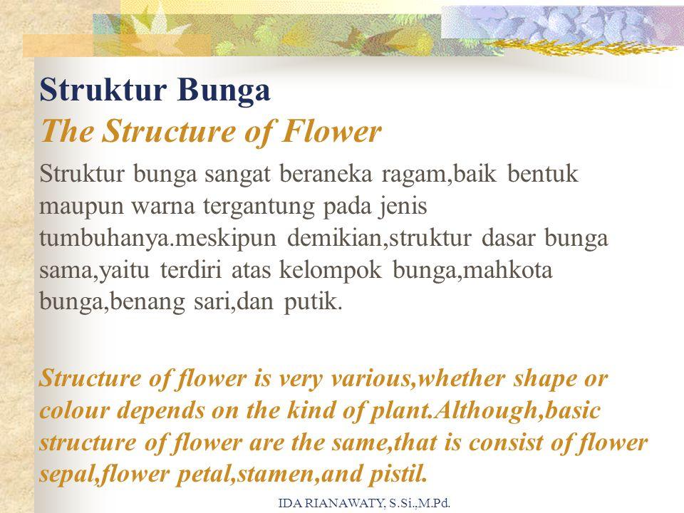 Struktur Bunga The Structure of Flower Struktur bunga sangat beraneka ragam,baik bentuk maupun warna tergantung pada jenis tumbuhanya.meskipun demikia