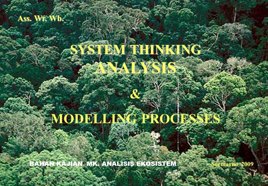 1 Ass. Wr. Wb. SYSTEM THINKING ANALYSIS & MODELLING PROCESSES Soemarno 2009 BAHAN KAJIAN MK. ANALISIS EKOSISTEM