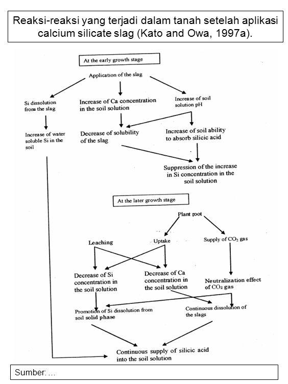 Reaksi-reaksi yang terjadi dalam tanah setelah aplikasi calcium silicate slag (Kato and Owa, 1997a). Sumber: …