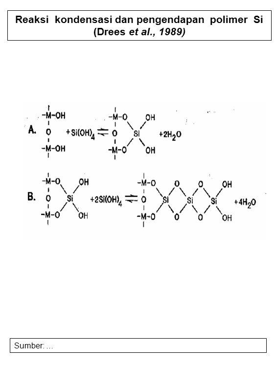 Reaksi kondensasi dan pengendapan polimer Si (Drees et al., 1989) Sumber: …