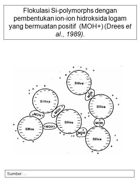 Flokulasi Si-polymorphs dengan pembentukan ion-ion hidroksida logam yang bermuatan positif (MOH+) (Drees et al., 1989). Sumber: …