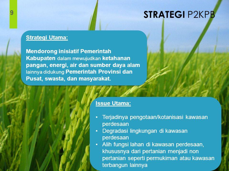 STRATEGI P2KPB 9 Strategi Utama: Mendorong inisiatif Pemerintah Kabupaten dalam mewujudkan ketahanan pangan, energi, air dan sumber daya alam lainnya