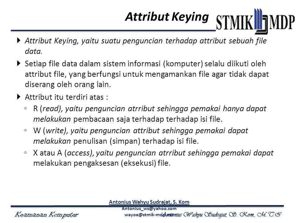 Keamanan Komputer Antonius Wahyu Sudrajat, S. Kom., M.T.I Attribut Keying  Attribut Keying, yaitu suatu penguncian terhadap attribut sebuah file data