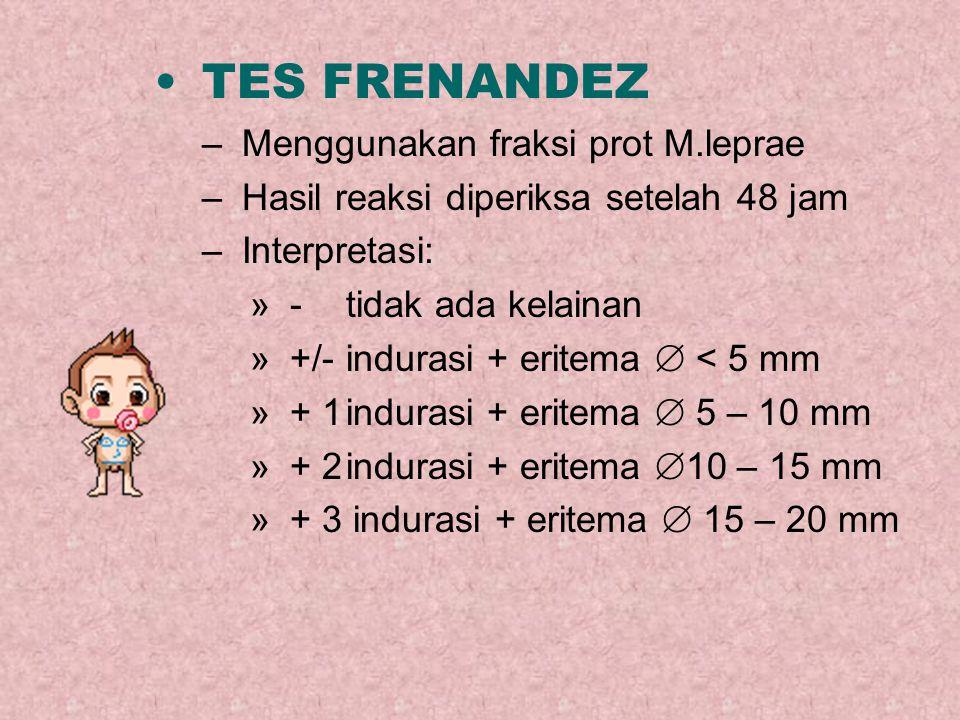 TES FRENANDEZ –Menggunakan fraksi prot M.leprae –Hasil reaksi diperiksa setelah 48 jam –Interpretasi: »-tidak ada kelainan »+/-indurasi + eritema  <