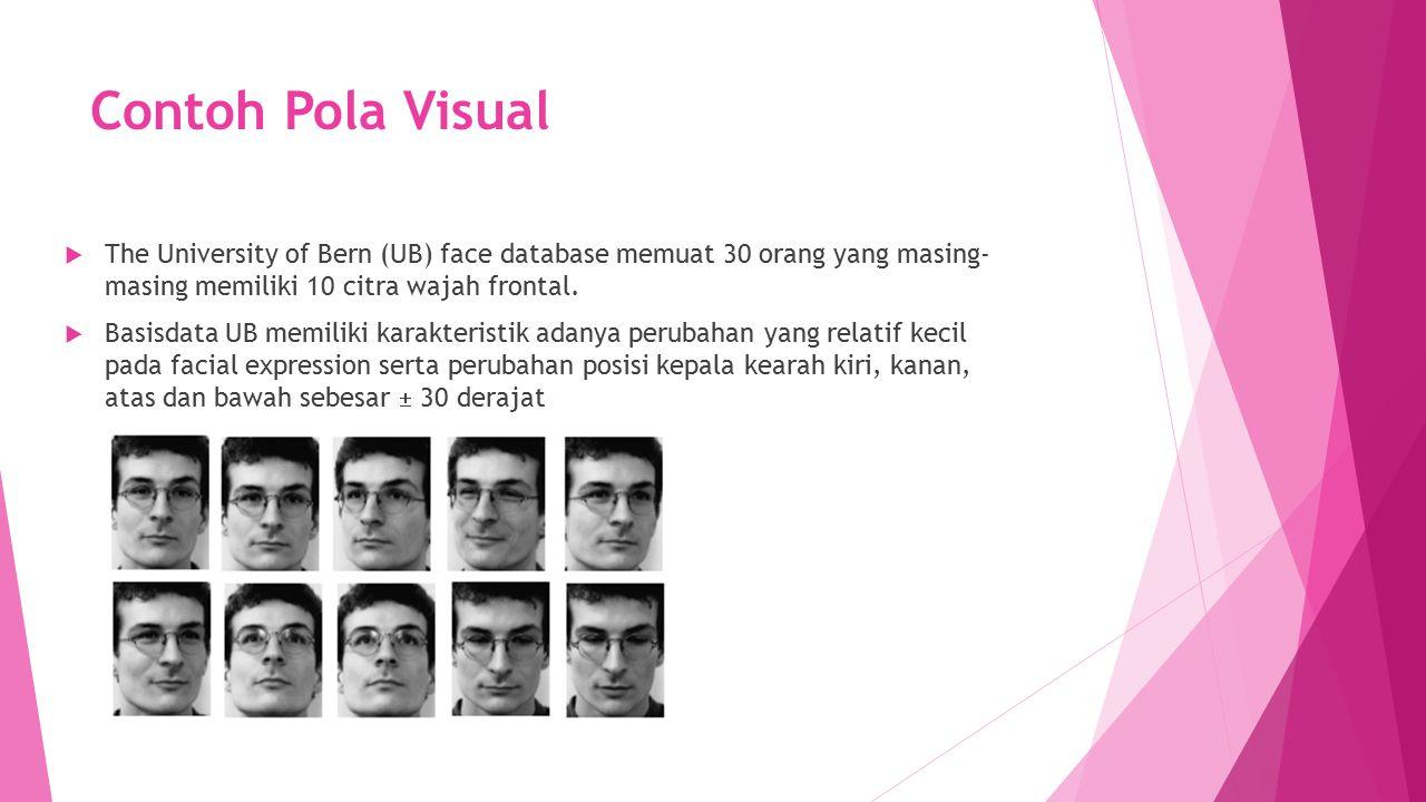 Contoh Pola Visual  The University of Bern (UB) face database memuat 30 orang yang masing- masing memiliki 10 citra wajah frontal.  Basisdata UB mem