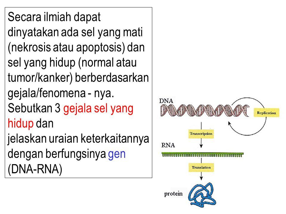 Secara ilmiah dapat dinyatakan ada sel yang mati (nekrosis atau apoptosis) dan sel yang hidup (normal atau tumor/kanker) berberdasarkan gejala/fenomen