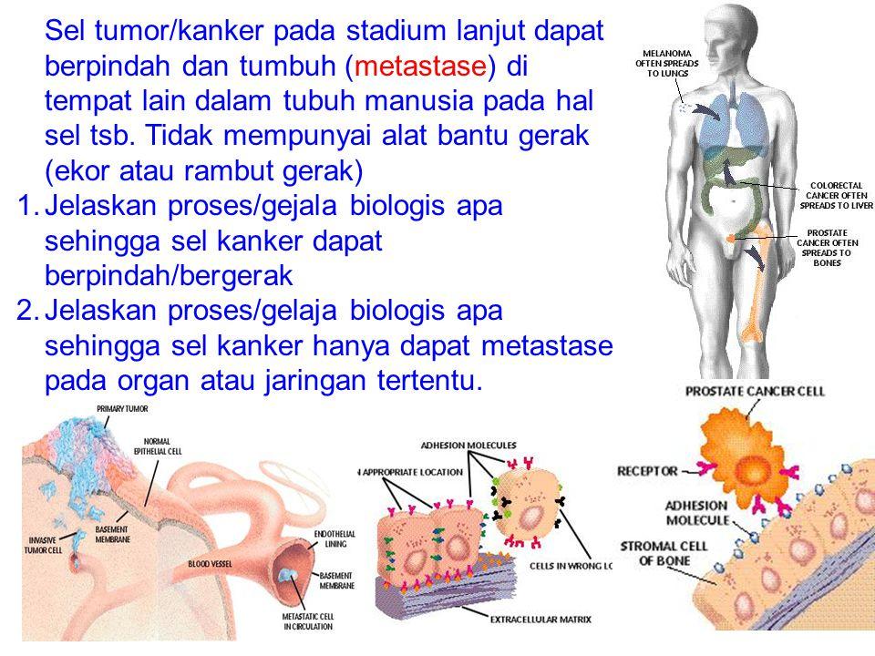 Sel tumor/kanker pada stadium lanjut dapat berpindah dan tumbuh (metastase) di tempat lain dalam tubuh manusia pada hal sel tsb. Tidak mempunyai alat