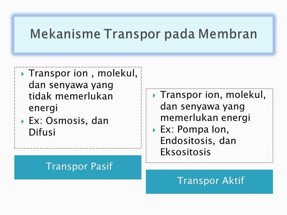 Transpor Pasif Transpor Aktif  Transpor ion, molekul, dan senyawa yang tidak memerlukan energi  Ex: Osmosis, dan Difusi  Transpor ion, molekul, dan senyawa yang memerlukan energi  Ex: Pompa Ion, Endositosis, dan Eksositosis