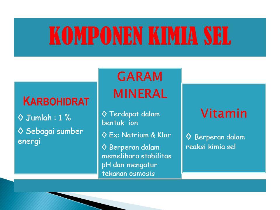 KOMPONEN KIMIA SEL K ARBOHIDRAT ◊ Jumlah : 1 % ◊ Sebagai sumber energi GARAM MINERAL ◊ Terdapat dalam bentuk ion ◊ Ex: Natrium & Klor ◊ Berperan dalam memelihara stabilitas pH dan mengatur tekanan osmosis Vitamin ◊ Berperan dalam reaksi kimia sel