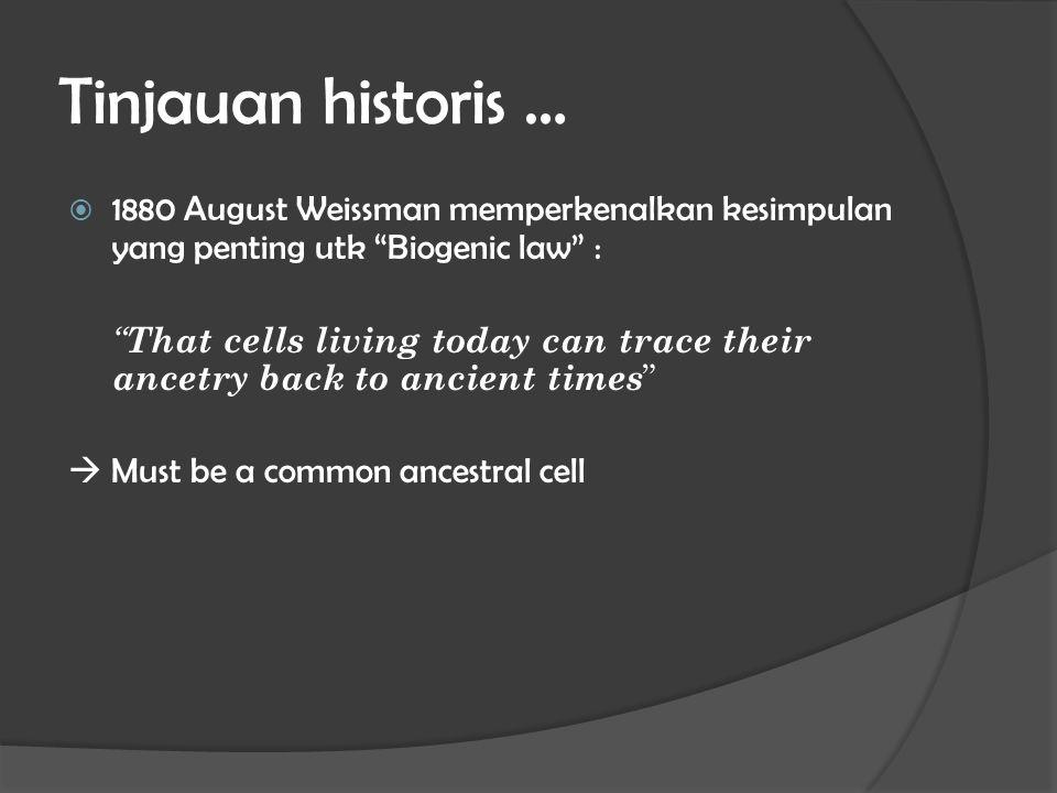 "Tinjauan historis …  1880 August Weissman memperkenalkan kesimpulan yang penting utk ""Biogenic law"" : "" That cells living today can trace their ancet"