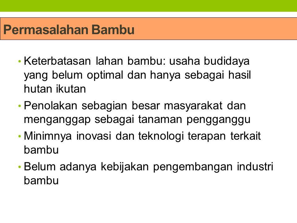 Permasalahan Bambu Keterbatasan lahan bambu: usaha budidaya yang belum optimal dan hanya sebagai hasil hutan ikutan Penolakan sebagian besar masyaraka