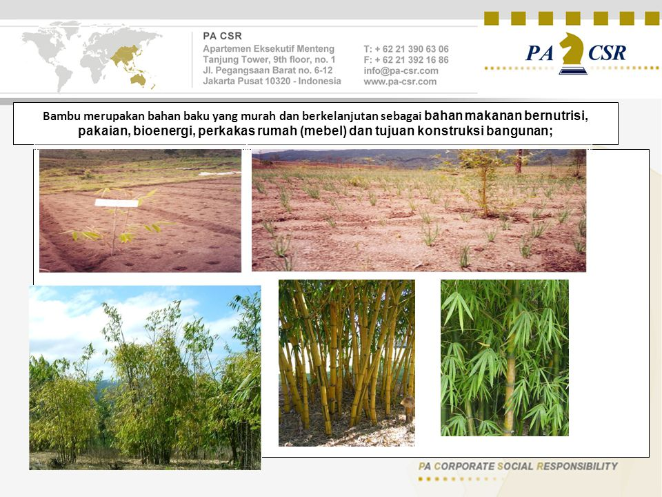 Bambu merupakan bahan baku yang murah dan berkelanjutan sebagai bahan makanan bernutrisi, pakaian, bioenergi, perkakas rumah (mebel) dan tujuan konstr