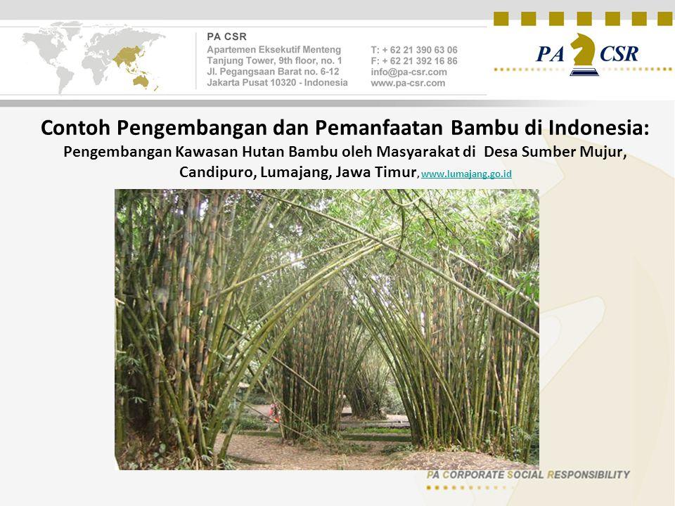 Contoh Pengembangan dan Pemanfaatan Bambu di Indonesia: Pengembangan Kawasan Hutan Bambu oleh Masyarakat di Desa Sumber Mujur, Candipuro, Lumajang, Jawa Timur, www.lumajang.go.idwww.lumajang.go.id