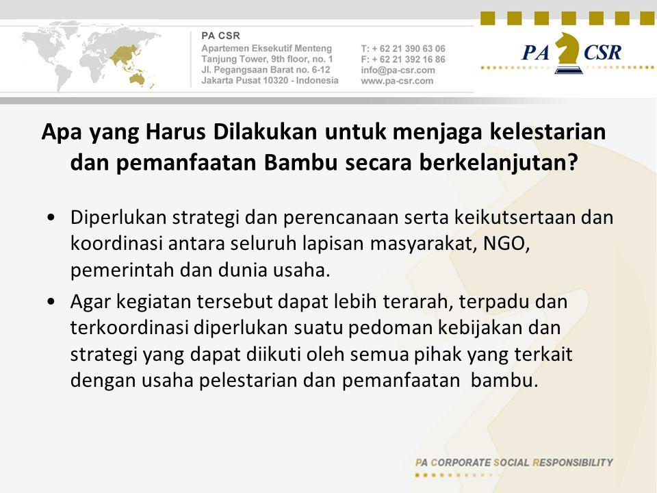 Apa yang Harus Dilakukan untuk menjaga kelestarian dan pemanfaatan Bambu secara berkelanjutan.