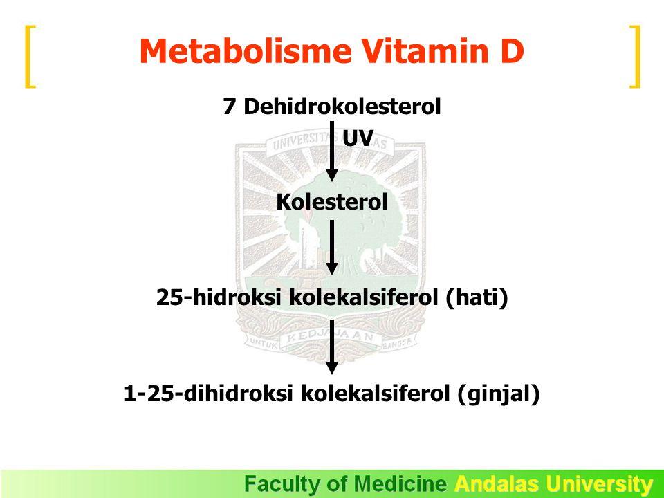 Metabolisme Vitamin D 7 Dehidrokolesterol UV Kolesterol 25-hidroksi kolekalsiferol (hati) 1-25-dihidroksi kolekalsiferol (ginjal)