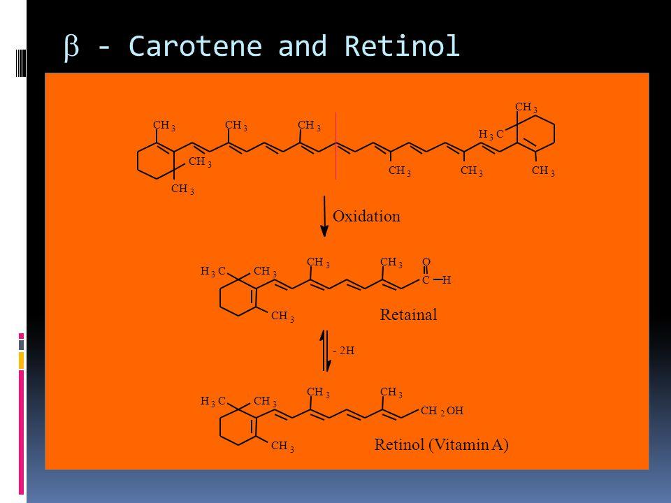  - Carotene and Retinol CH 3 3 3 3 3 3 3 3 H 3 C 3 H 3 C 3 3 3 3 H 3 C 3 3 3 3 2 OH Oxidation C H O Retainal Retinol (Vitamin A) - 2H