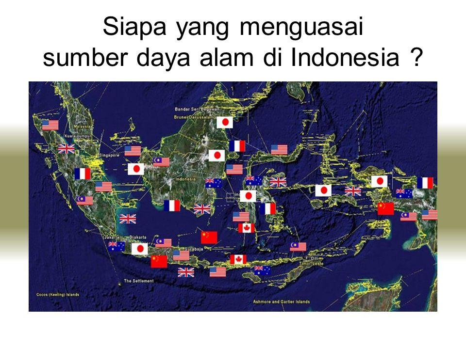 Siapa yang menguasai sumber daya alam di Indonesia