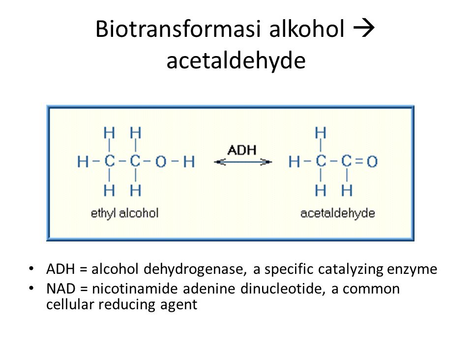 Biotransformasi alkohol  acetaldehyde ADH = alcohol dehydrogenase, a specific catalyzing enzyme NAD = nicotinamide adenine dinucleotide, a common cel