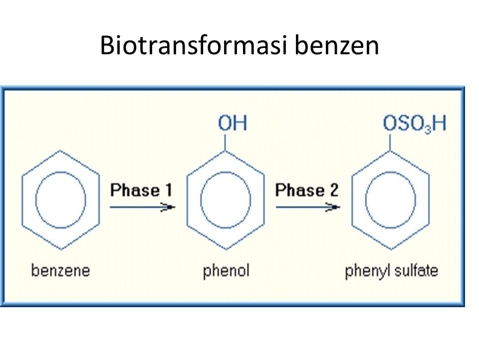 Biotransformasi benzen