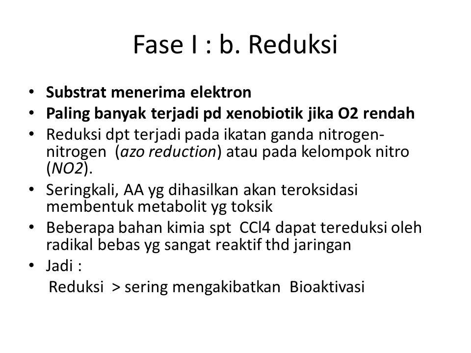 Fase I : b.