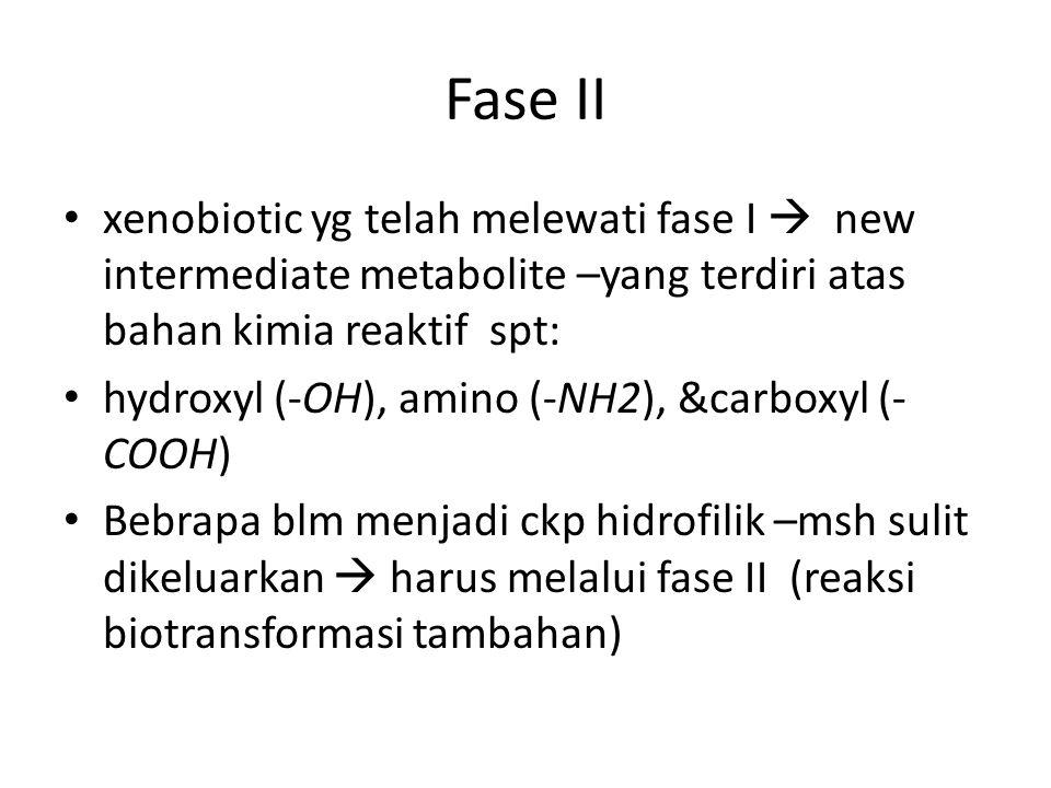 Fase II xenobiotic yg telah melewati fase I  new intermediate metabolite –yang terdiri atas bahan kimia reaktif spt: hydroxyl (-OH), amino (-NH2), &carboxyl (- COOH) Bebrapa blm menjadi ckp hidrofilik –msh sulit dikeluarkan  harus melalui fase II (reaksi biotransformasi tambahan)