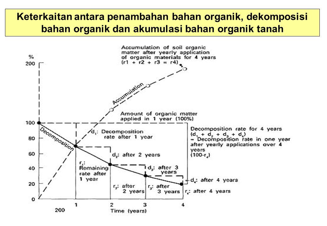 Keterkaitan antara penambahan bahan organik, dekomposisi bahan organik dan akumulasi bahan organik tanah