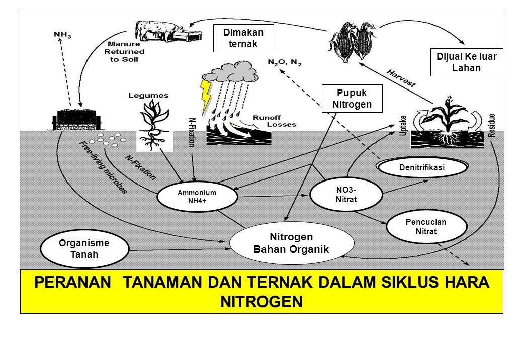 PRAKTEK BUDIDAYA TANAMAN vs BOT Menghindari pengolahan tanah pada saat kondisi tanah masih basah, khususnya untuk pertanian lahan kering.