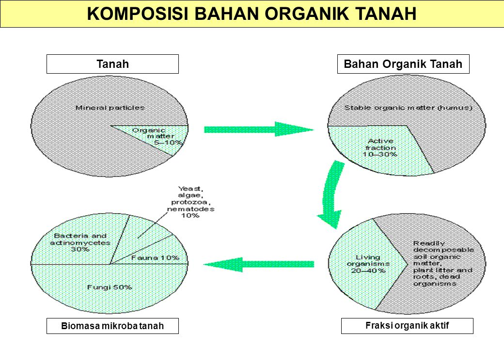 KOMPOSISI BAHAN ORGANIK TANAH Biomasa mikroba tanah Fraksi organik aktif TanahBahan Organik Tanah