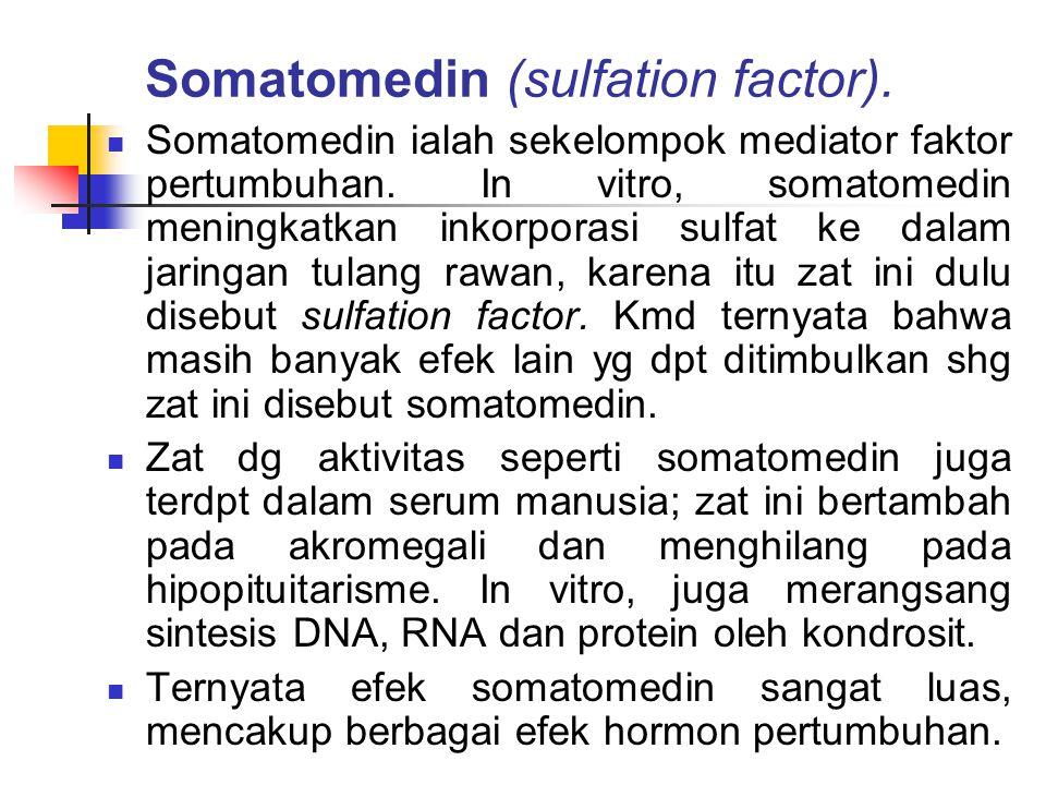 Somatomedin (sulfation factor). Somatomedin ialah sekelompok mediator faktor pertumbuhan. In vitro, somatomedin meningkatkan inkorporasi sulfat ke dal