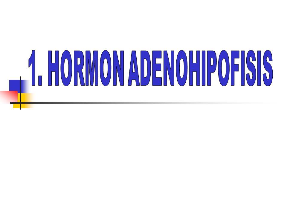 PENDAHULUAN  Sekresi hormon hipofisis anterior dikontrol oleh hipotalamus, juga dipengaruhi banyak faktor a.l.