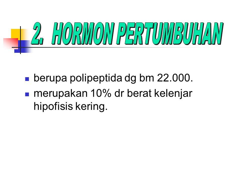 SOMATROPIN.Secara kimia identik dg hormon pertumbuhan manusia, tetapi dibuat dg rekayasa genetik.