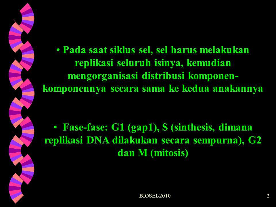BIOSEL 201013 G2 Apakah replikasi DNA sudah selesai? Apakah kerusakan DNA sudah diperbaiki?