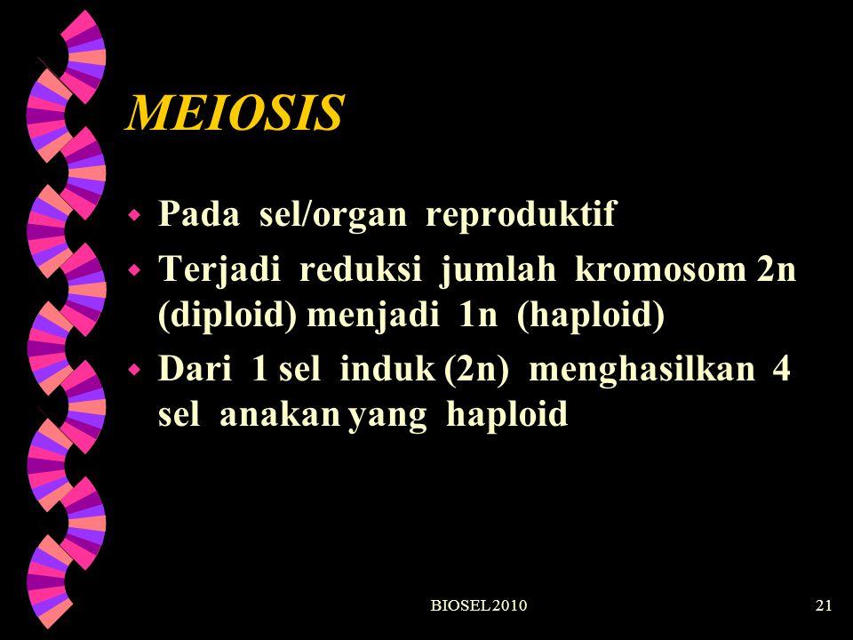 BIOSEL 201021 MEIOSIS w Pada sel/organ reproduktif w Terjadi reduksi jumlah kromosom 2n (diploid) menjadi 1n (haploid) w Dari 1 sel induk (2n) menghas