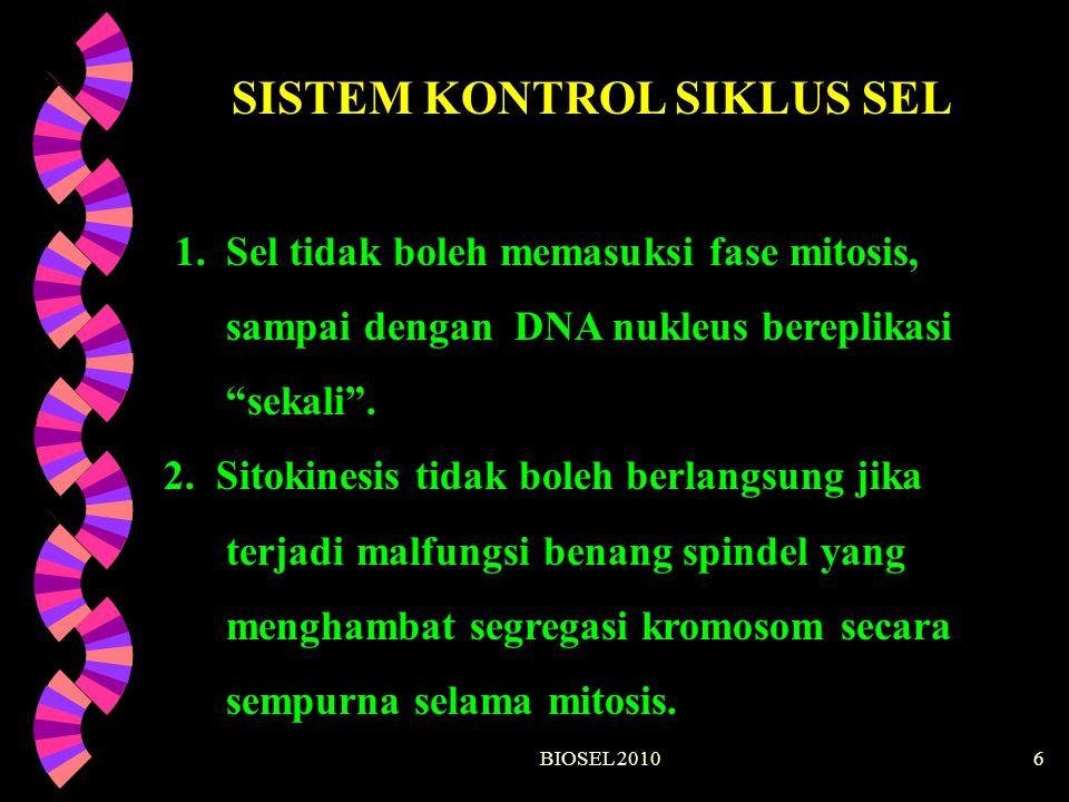 """BIOSEL 20106 SISTEM KONTROL SIKLUS SEL 1. Sel tidak boleh memasuksi fase mitosis, sampai dengan DNA nukleus bereplikasi """"sekali"""". 2. Sitokinesis tidak"""