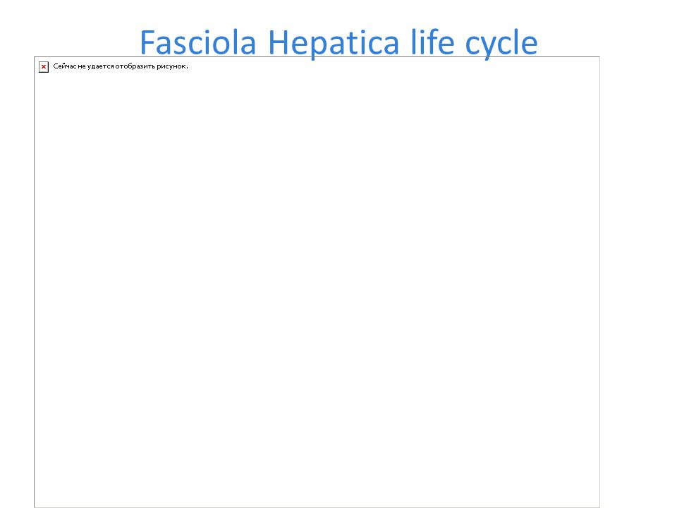 Fascioliasis  Human fascioliasis is usually recognized as an infection of the bile ducts and liver, but infection in other parts of the body can occur.