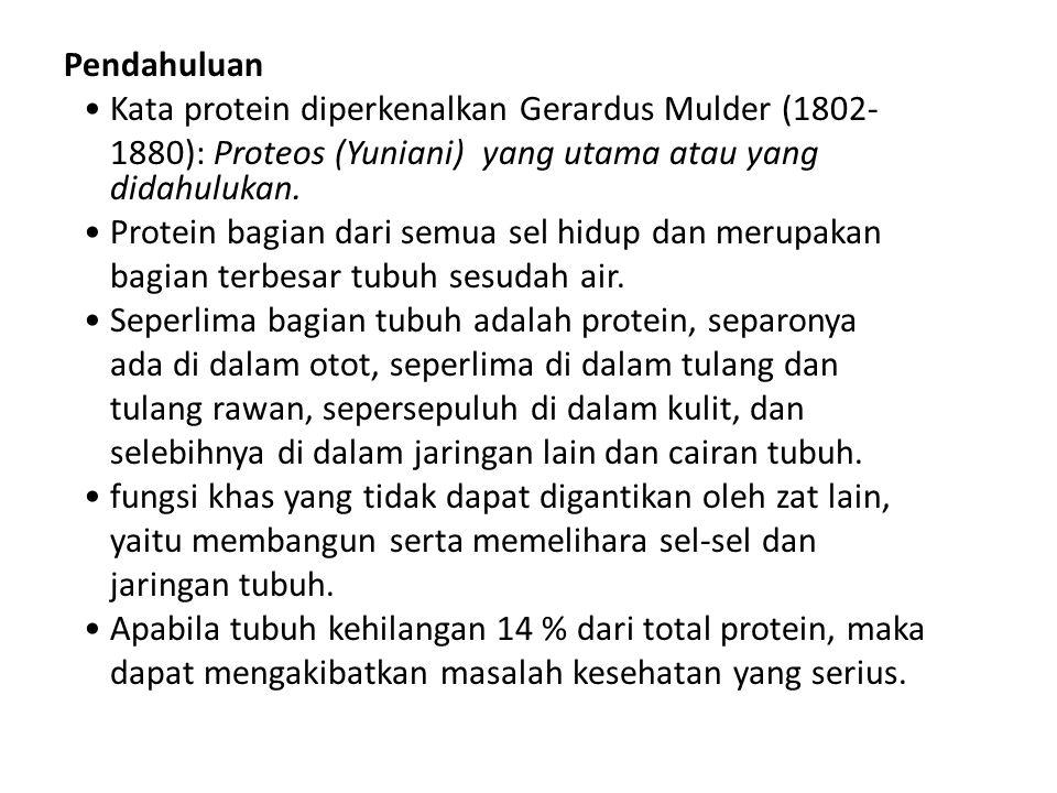 Pendahuluan Kata protein diperkenalkan Gerardus Mulder (1802- 1880): Proteos (Yuniani) yang utama atau yang didahulukan. Protein bagian dari semua sel