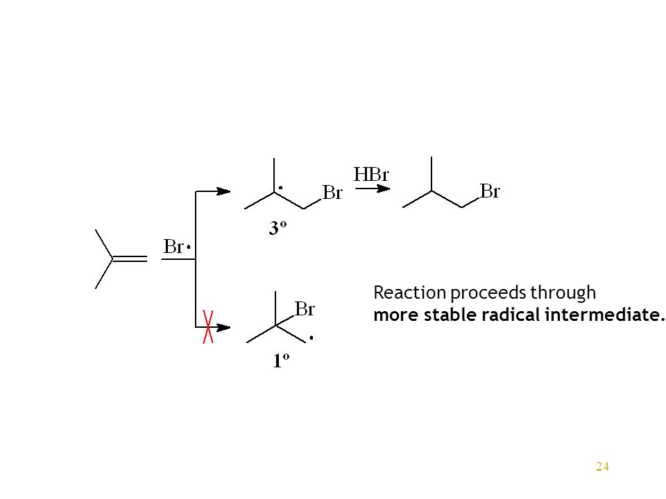 24 Reaction proceeds through more stable radical intermediate.