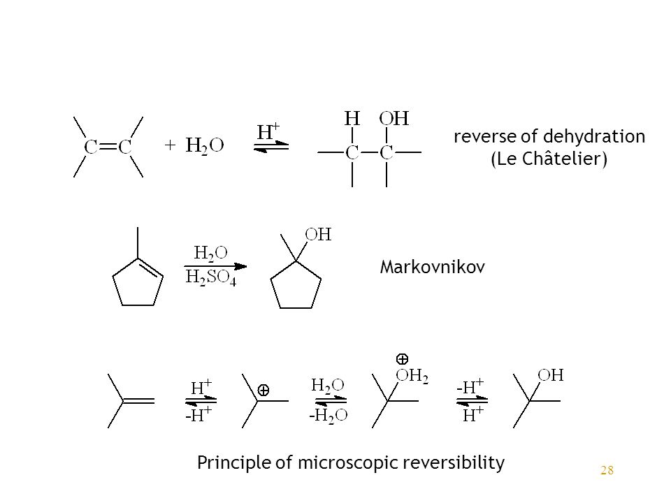 28 reverse of dehydration (Le Châtelier) Markovnikov Principle of microscopic reversibility
