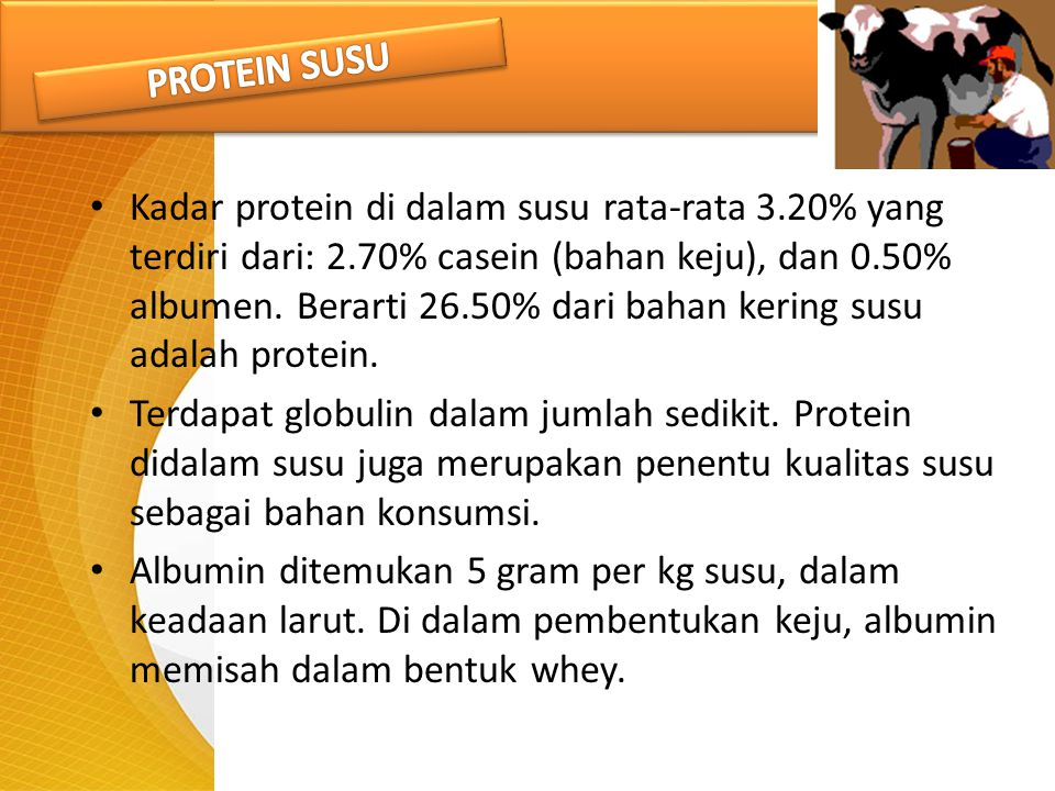 Kadar protein di dalam susu rata-rata 3.20% yang terdiri dari: 2.70% casein (bahan keju), dan 0.50% albumen. Berarti 26.50% dari bahan kering susu ada