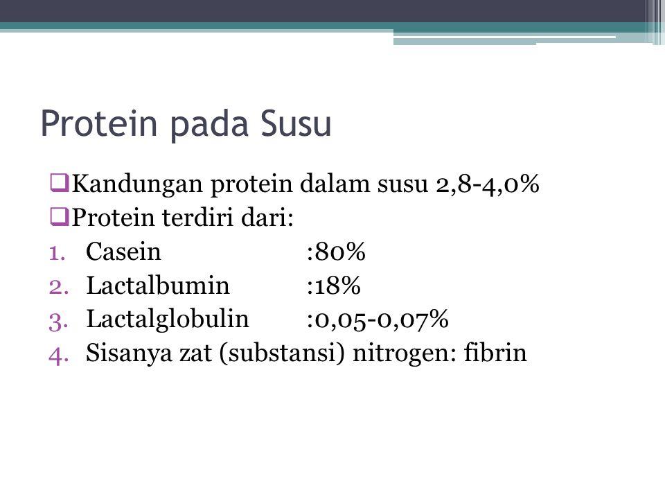 Protein pada Susu  Kandungan protein dalam susu 2,8-4,0%  Protein terdiri dari: 1.Casein:80% 2.Lactalbumin:18% 3.Lactalglobulin:0,05-0,07% 4.Sisanya zat (substansi) nitrogen: fibrin