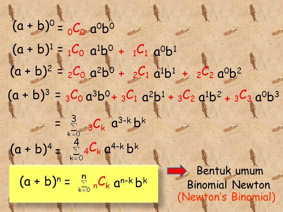 = 0 C 0 (a + b) 2 (a + b) 3 (a + b) 4 + 1 C 1 (a + b) 1 (a + b) 0 a 0 b 0 = 1 C 0 a 1 b 0 a 0 b 1 + 2 C 1 = 2 C 0 a 2 b 0 a 1 b 1 + 2 C 2 a 0 b 2 + 3 C 1 = 3 C 0 a 3 b 0 a 2 b 1 + 3 C 2 a 1 b 2 + 3 C 3 a 0 b 3 (a + b) n = 3 C k a 3-k b k = 4 C k a 4-k b k = n C k a n-k b k Bentuk umum Binomial Newton (Newton's Binomial)